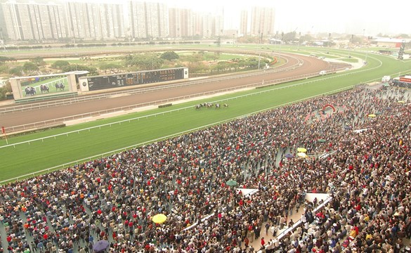 Come Horse-Racing Tour